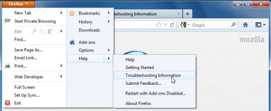 Picture of Troubleshooting Information in Firefox